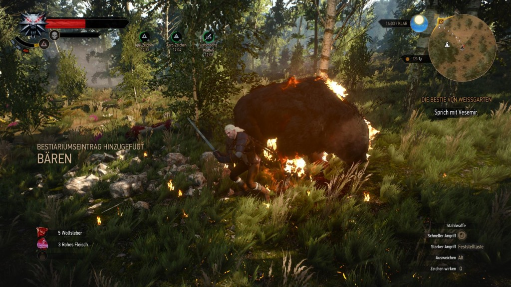 the_witcher_3_wild_hunt (5)