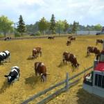 Auch Kühe wollen gepflegt werden